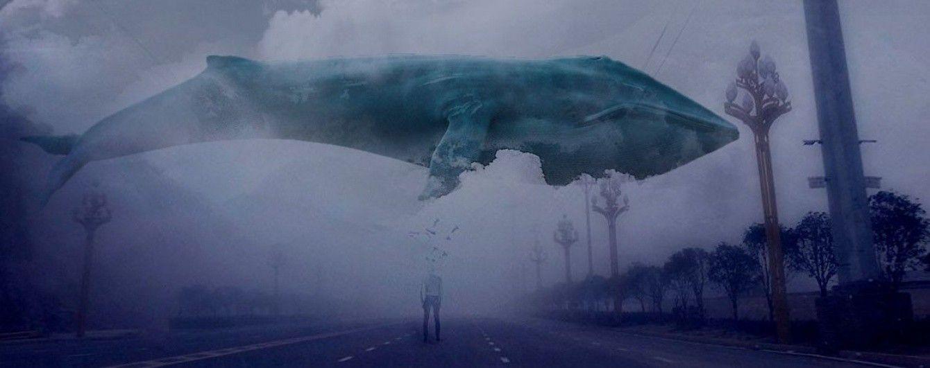 """Верховная Рада приняла закон, который позволит наказывать организаторов суицидальной игры """"Синий кит"""""""