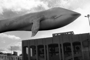 """Смертельні """"сині кити"""": у Сумах виявили 11 підлітків у суїциїдальних групах"""