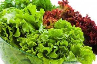 В Украине в полтора-два раза подорожал листовой салат
