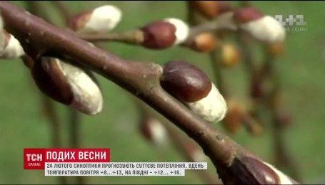 До України на один день увірветься тепла весняна погода