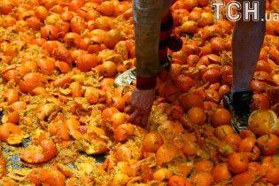 Фруктовая баталия. В Италии во время карнавальных боев раздавили тысячи апельсинов