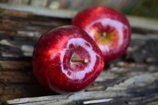 Украина побила исторический рекорд по экспорту яблок