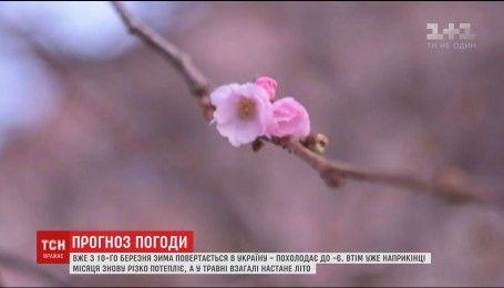 В Украину вернется зима