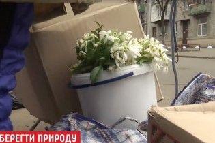 Дефицит запрещенных цветов: крупные штрафы напугали продавцов подснежников 8 марта
