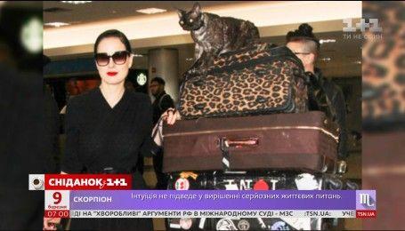 Дита фон Тиз и ее кот оказались в центре внимания в аэропорту Лос-Анджелеса
