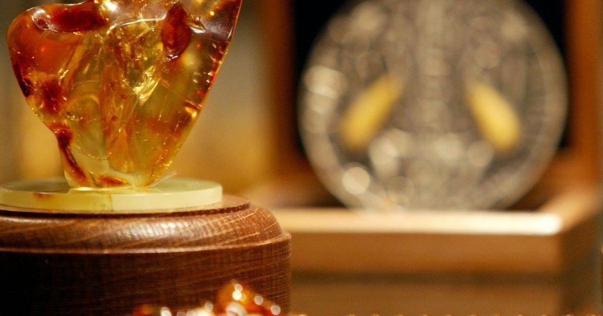 В Украине может появиться монополист по добыче янтаря