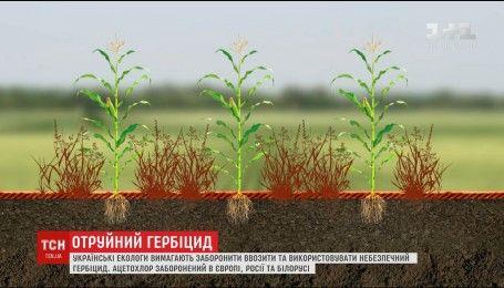 Екологи вимагають заборонити в Україні небезпечний для людей та довкілля гербіцид