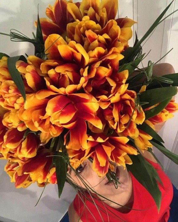 Презентація тюльпанів на честь Джамали_1
