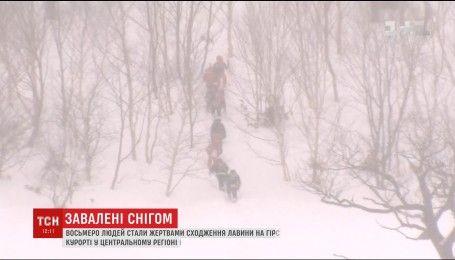 Восемь человек стали жертвами схода лавины в Японии