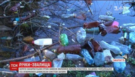 Береги закарпатських річок вкрили гори сміття