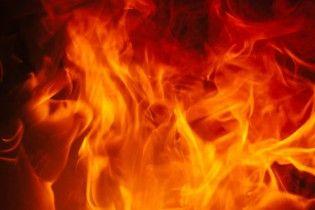 Рекордна партія: у печі львівського СБУ спалили чверть тонни гашишу на 50 мільйонів