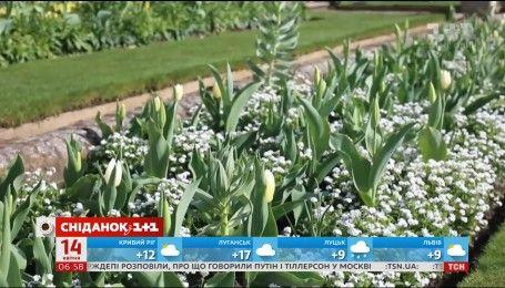 """В Лондоне в память о принцессе Диане создали """"Белый сад"""""""