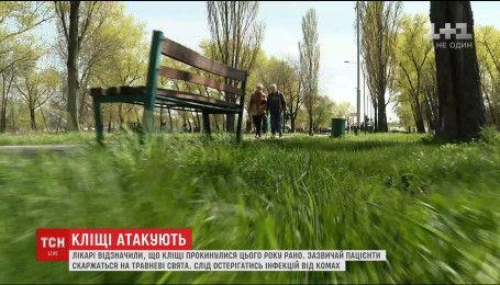 В Україні через теплий березень активізувалися кліщі