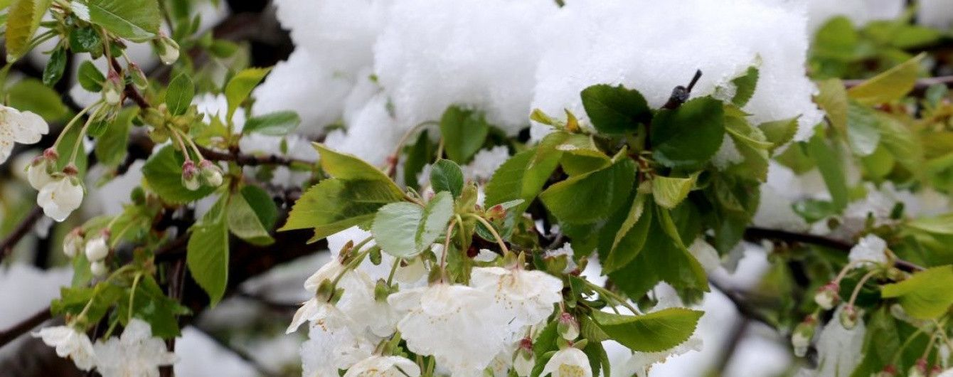 Негода зі східних областей переміститься на Південь та Захід. Мапа снігів на 20 квітня