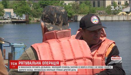 В Николаеве спасают дельфина, который заплыл с моря в реку Ингул