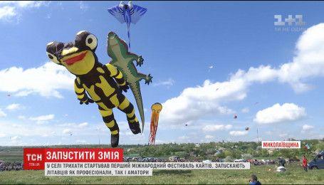 Сотни воздушных змеев взмыли в небо на Николаевщине