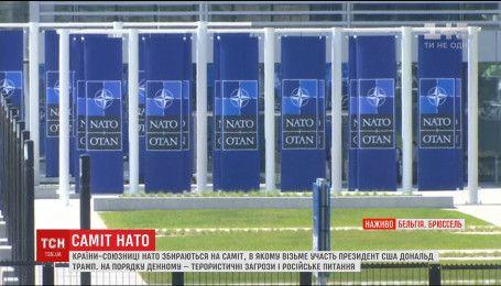 Террористические угрозы и русский вопрос поднимут на саммите НАТО
