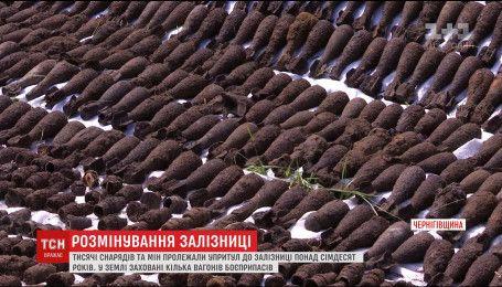 На Чернігівщині сапери поблизу села знайшли ешелон боєприпасів під землею часів Другої Світової