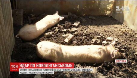 В Новолуганском несколько вражеских снарядов попали в жилые дома и газопровод