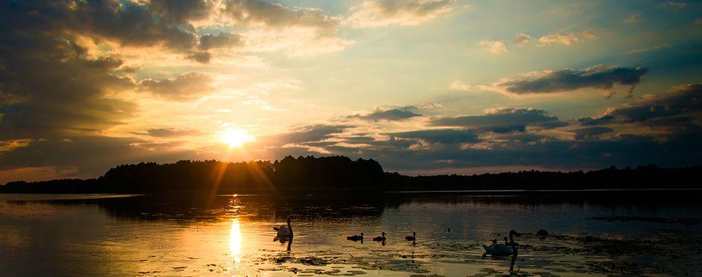 Острів на озері світязь
