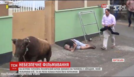 Жертвою роз'ярілого бика у Португалії став чоловік із айпадом у руках
