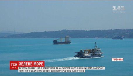 Сотни стамбульцев и туристов привлек к себе знаменитый Босфор, который изменил цвет