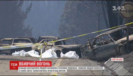 В Португалии из-за лесных пожаров погибли по меньшей мере 60 человек
