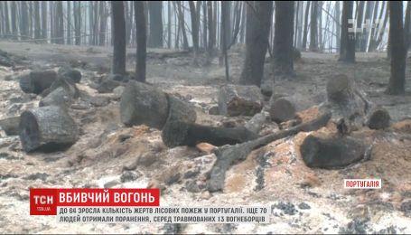 У Португалії вирують жахливі лісові пожежі, є загиблі