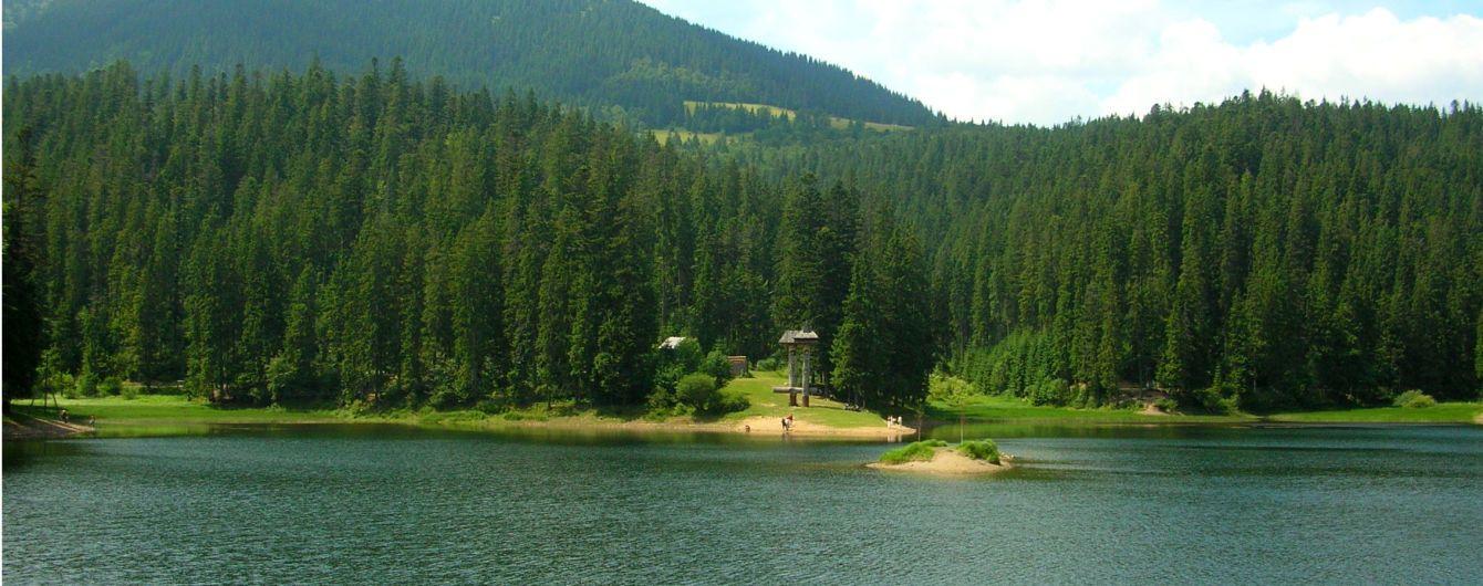 У Раді вирішили реанімувати українські природні парки