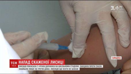 Родители девочки из Конотопа, которую покусала дикая лиса, разыскивают вакцину против бешенства