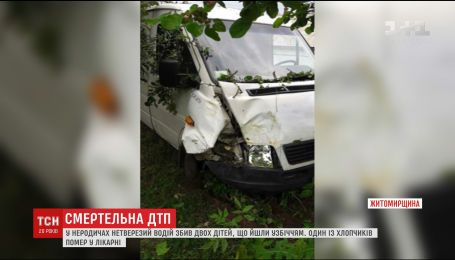 На Житомирщині нетверезий водій збив двох дітей