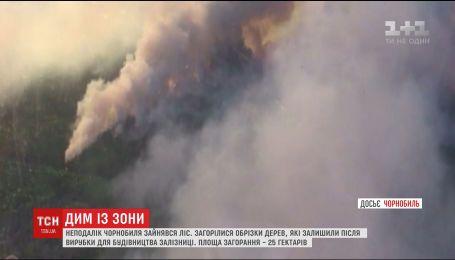 Для гасіння пожежі поблизу Чорнобиля задіяли літаки та гелікоптери