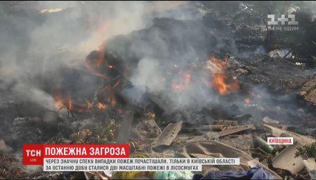 Из-за жары на Киевщине произошли два пожара