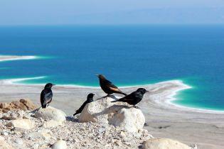 Секрети Мертвого моря. Молодильний еліксир та відновлення нервової системи