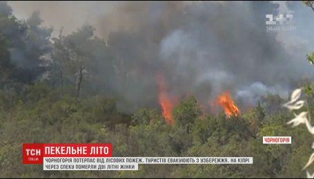 Черногория страдает от пожаров, а Кипр охватила невиданная жара