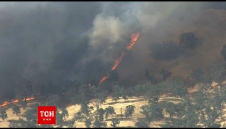 В Сети появились кадры масштабного пожара в Калифорнии