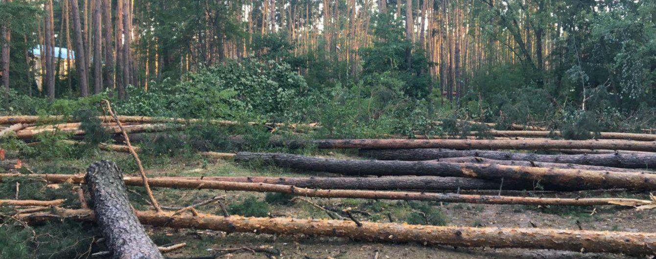 Протест против вырубки леса: киевляне заблокировали дорогу на Вышгород