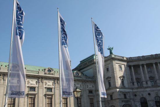 """На засіданні ради ОБСЄ у Відні рішуче засудили """"вибори"""" на Донбасі"""