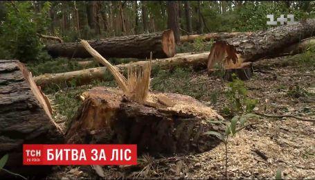 Стріляниною та побитими авто закінчився конфлікт між лісорубами та мешканцями околиці Києва