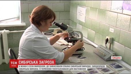 На Сумщині у жінки запідозрили сибірську виразку