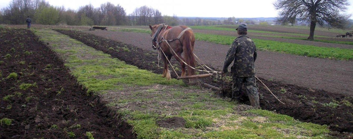 Порошенко дал год на создание электронного кадастра для запуска земельной реформы
