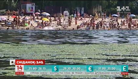 В Киеве на реке Днепр начала цвести вода