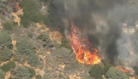 Потужні лісові пожежі випалюють Каліфорнію