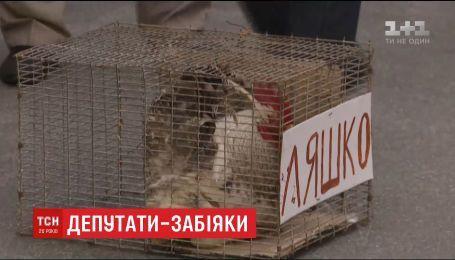 Игорь Мосийчук подрался под судом с депутатом БПП через пикет против Ляшко