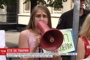 Под Администрацией президента столкнулись митинги зоозащитников и любителей цирка