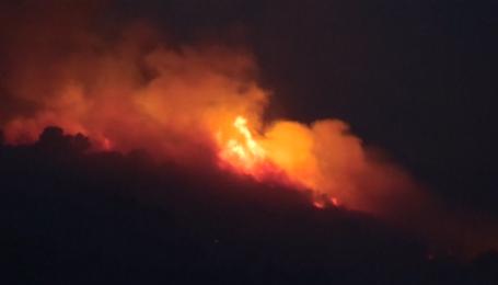 На півдні Франції загорілися лісові масиви