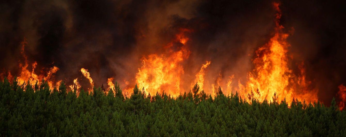 Штраф у 36 млн доларів доведеться сплатити 15-річному американцю за підпал лісу