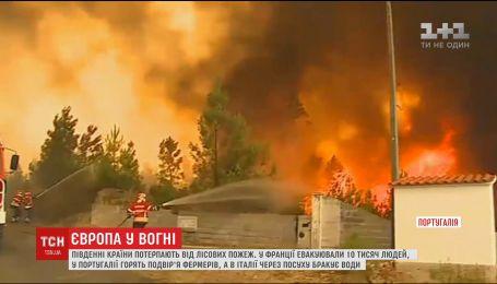 Южная Европа страдает от лесных пожаров