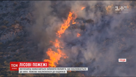 Лесные пожары в Греции приблизились к столице и уже угрожают домам