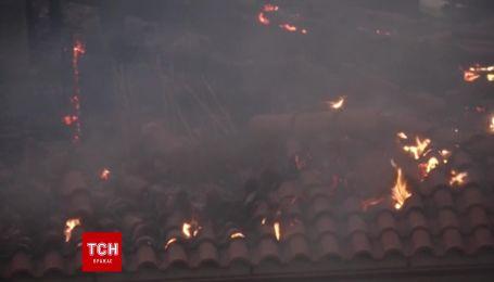 Поблизу Афін спалахнула масштабна лісова пожежа